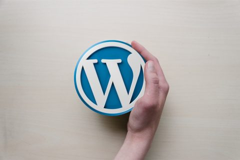 Setup Your WordPress Website In 20 Minutes